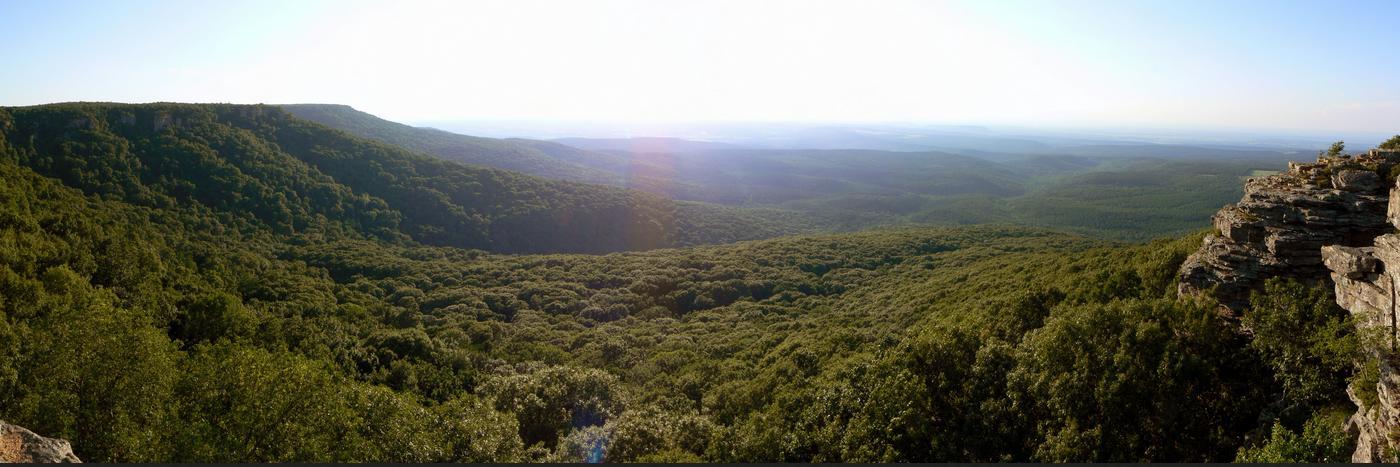 Arkansas Hügel  Jasari